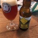 marco-bijsterbosch-1167020