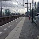 leon-elshof-12350925