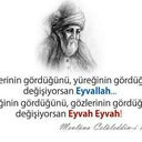 ayse-125933573