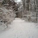 wout-bos-15677261