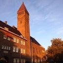 joshi-van-rijswijk-17655281