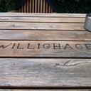 tony-willighagen-18699665