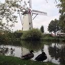 marco-van-den-hout-22582540