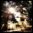 seablue-dreaming-23033679