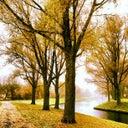 bertus-vorstenbosch-25997296