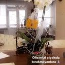 mehtap-izcioglu-27556455
