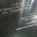 paloma-ferraz-28960287