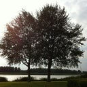 joyce-oude-elferink-393766