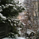 sibylle-kluike-30659186