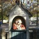 shannen-van-cortenberghe-14642334