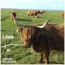 harald-r-fortmann-35178337
