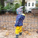 suse-koschmieder-37005435