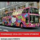 ozlem-coskun-41921353