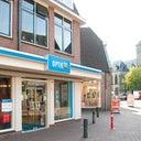 rik-van-den-broek-477743