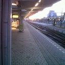 thomas-van-der-hooft-13208921