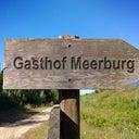 jack-meerburg-5018075