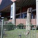 rafael-ramos-50907767