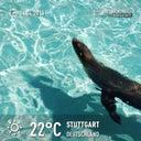 marcel-zimmermann-51186306