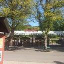 steffen-engelhart-52025238