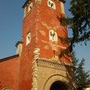 jovana-dimitrijevic-53139504