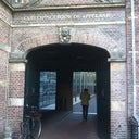 hermineke-van-bockxmeer-5368409