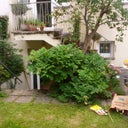 daniel-oliveira-6368597
