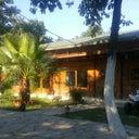 yaren-irem-65389866