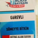 sumeyye-bitgin-67434518