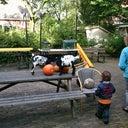 paul-van-der-loos-69609845