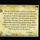 arzu-yalcin-kaya-70421126