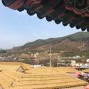 judy-yoon-70503742
