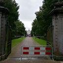 ronald-van-der-lingen-719322