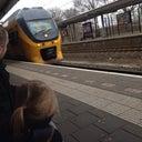 dineke-veldmeijer-72002358