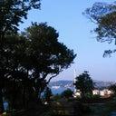 melih-onay-75717601