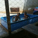 debora-castilhos-76830072