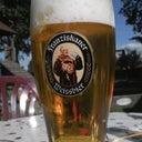 gunter-kastenfrosch-8487323