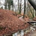 thom-rietberg-85971303
