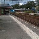 ronald-zetzema-3657595