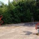 dianne-hoogenboom-11814702