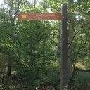 dutch-stonehenge-19396871