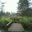 thijs-wilbrink-1240613
