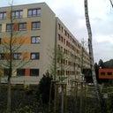 julian-liebl-520809