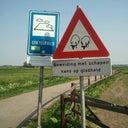 jelle-van-der-linde-6420556
