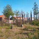 omko-huizenga-13874985