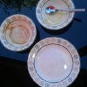 stefanie-hanemaaijer-10555259