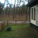 thijs-van-dijk-12859214