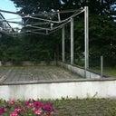 ines-vangerow-3568434