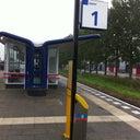 daniel-edelenbosch-13180431