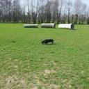 koen-van-dorp-23613701