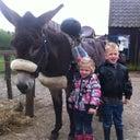 lars-van-ginhoven-11833125